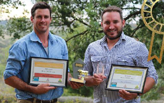 ROSEDALE RUBY WINS MULTIPLE AWARDS FOR OUTSTANDING BEEF!